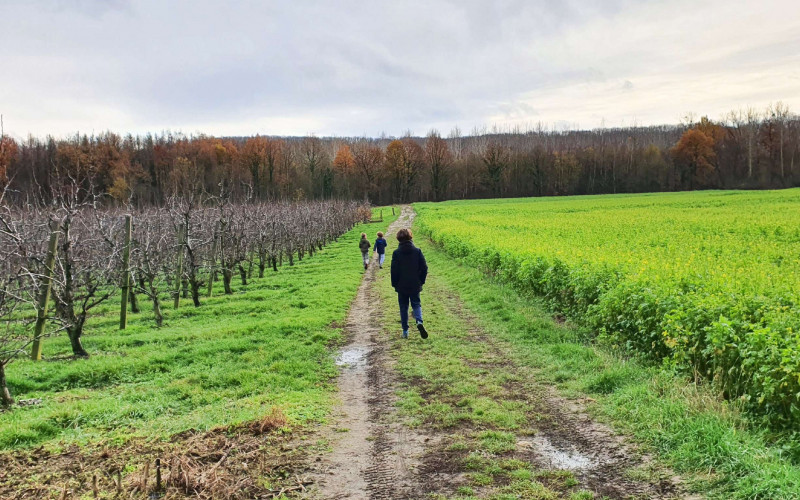 Wandelen in Aarschot? Op naar een goede gezondheid met onze 16 favoriete wandelroutes!